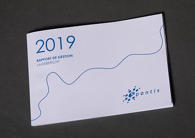Spontis rapports de gestion Publications by STEMUTZ